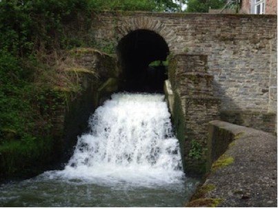Favoriser le retour des poissons dans le bassin de la dyle contrat de rivi re dyle gette - Bassin ancien vendre saint etienne ...